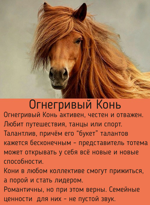 1991 год - какого животного по восточному гороскопу? Описание мужчин и женщин, совместимость, знаки зодиака и счастливые талисманы
